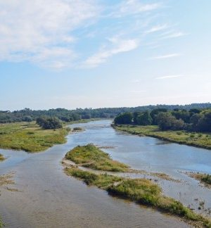 Maitland-River-from-Menesetung-Bridge-490x324