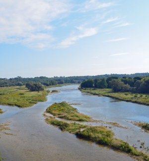 Maitland-River-from-Menesetung-Bridge-490x324